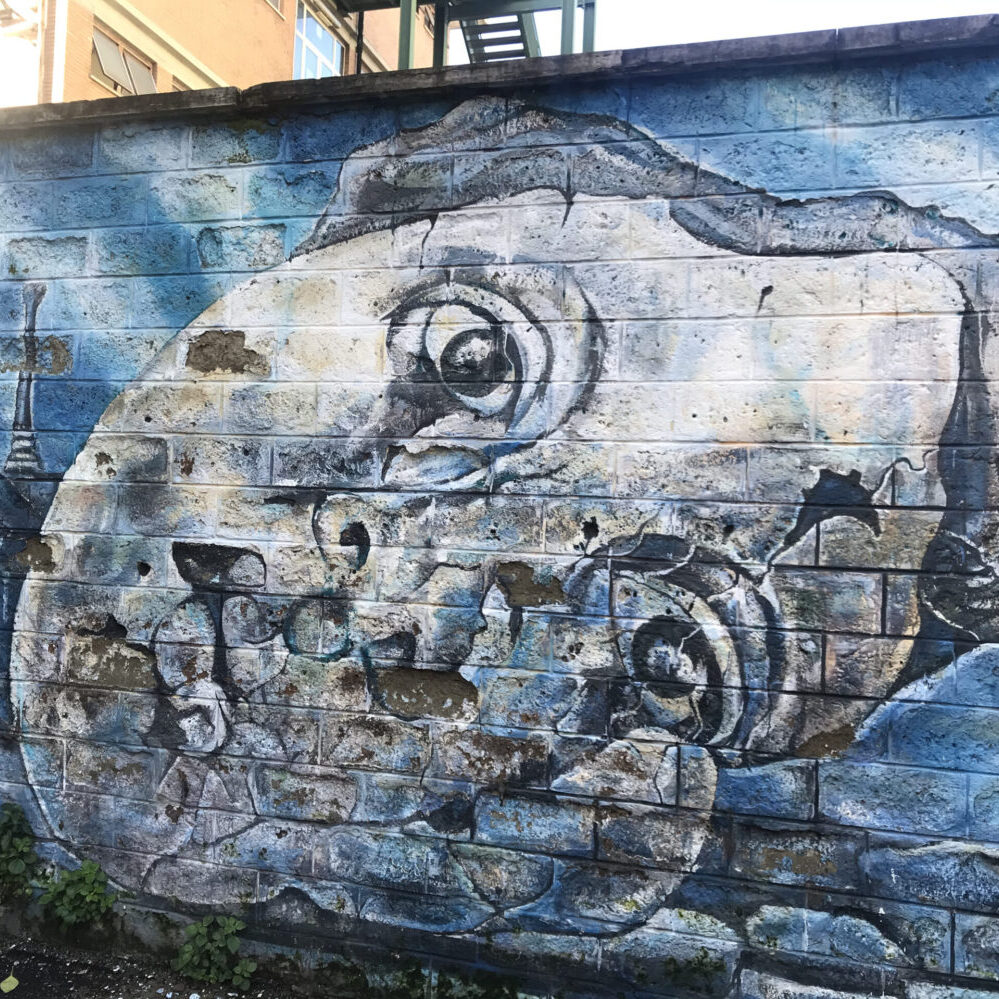 Street Art in Torpignattara: Carlos Atoche