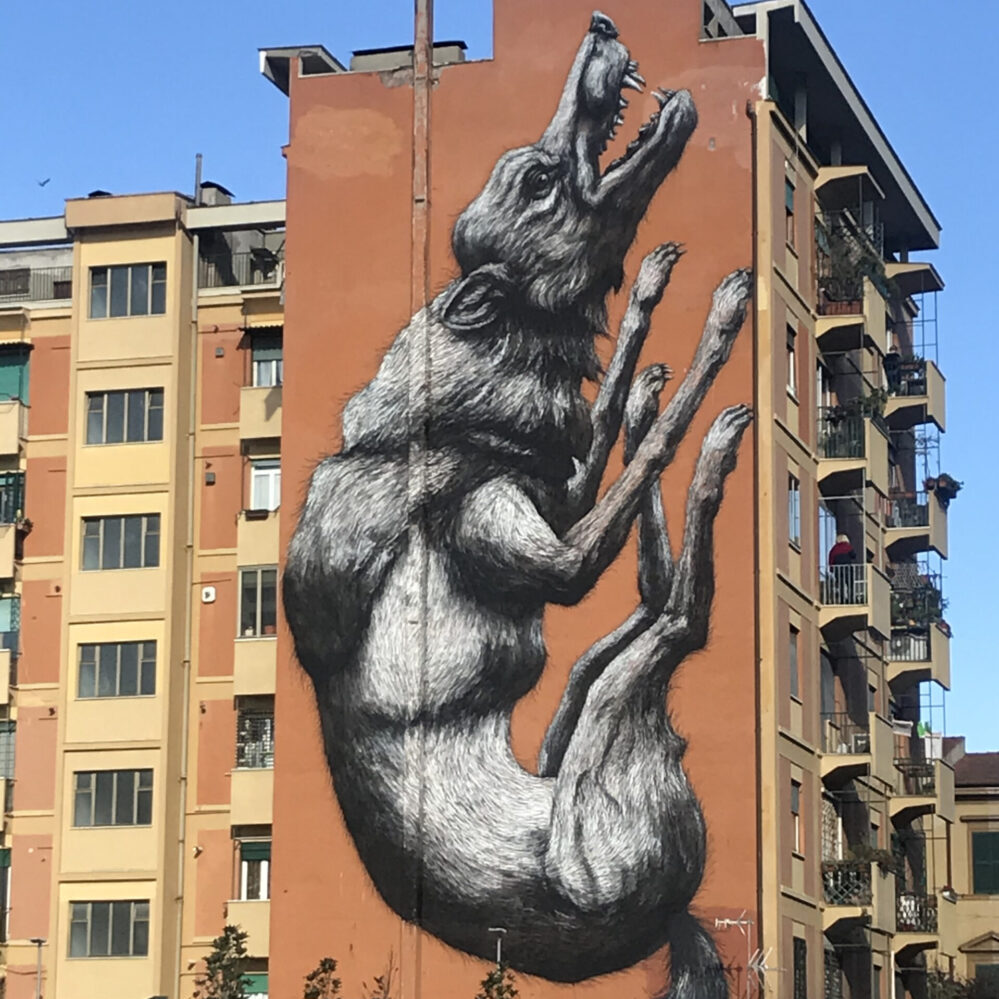 Street Art in Testaccio: Roa